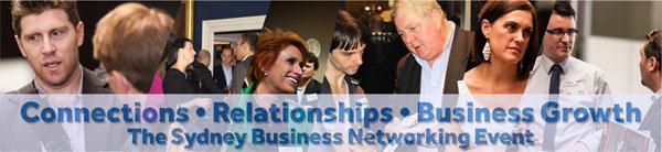 Biz Networking Banner