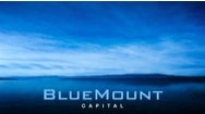Bluemount Capital