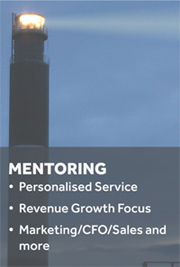 Business Mentoring to Grow Your Business
