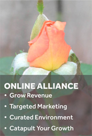 Online Alliance Revenue Growth Tool